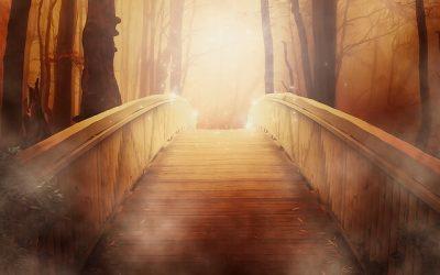 Wat te doen als je als lichtwerker niet begrepen wordt in deze wereld?